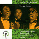 Southern Journey Vol. 8: Velvet Voices