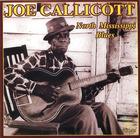 Joe Callicott: North Mississippi Blues