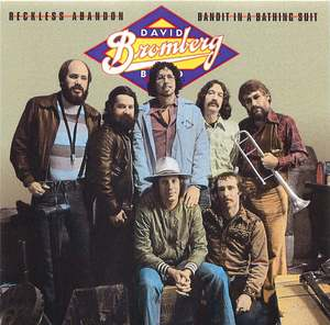 David Bromberg: Reckless Abandon/Bandit In a Bathing Suit