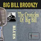 The Chronicles Of Big Bill