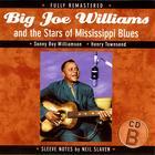 Big Joe Williams and the Stars of Mississippi Blues (B)