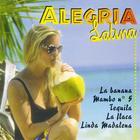 Alegria Latina