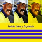 Best Of Pedro Calvo