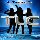 A Tribute To TLC