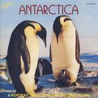 Antarctica: A Portrait In Wildlife & Natural Sound