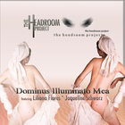 Dominus Illuminato Mea