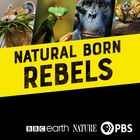 Natural Born Rebels, Episode 1, Hunger Wars