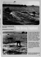 The Skiing Elephant