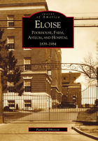 Eloise: Poorhouse, Farm, Asylum and Hospital 1839-1984