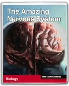 Amazing Human Body, The Amazing Nervous System