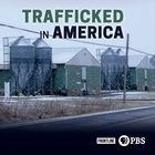 Frontline, Season 36, Episode 9, Trafficked in America