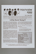 Looking Beyond Beijing +5