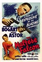 The Maltese Falcon (1941): Shooting script