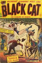 Black Cat Comics, Vol. 1 no. 20