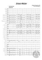 Schatz-Walzer, arranged for Symphonic Band, Op. 418