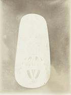7 - B.M (8): Photo of a War Shield