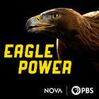 NOVA, Eagle Power