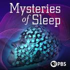 NOVA, Season 47, Episode 4, Mysteries of Sleep