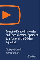 Combined Staged Telo-velar and Trans-choroidaI Approach to a Tumor of the Sylvian Aqueduct
