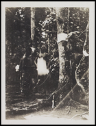 2 males standing near trees
