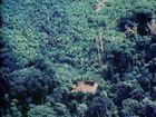 Yanomamö, A Multidisciplinary Study