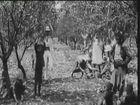 Chalutzim: Piedmontese Pioneers in Eretz Israel