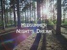 ShakespeaRe-Told, Season 1, Episode 4, A Midsummer Night's Dream